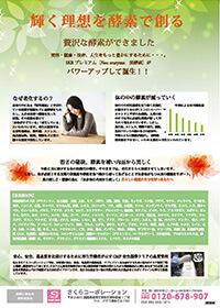 福岡 チラシデザイン サンプル